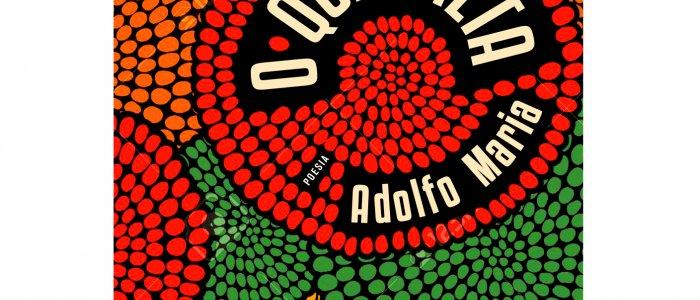 """Lançamento do livro """"O Que Falta"""" de Adolfo Maria na UCCLA"""