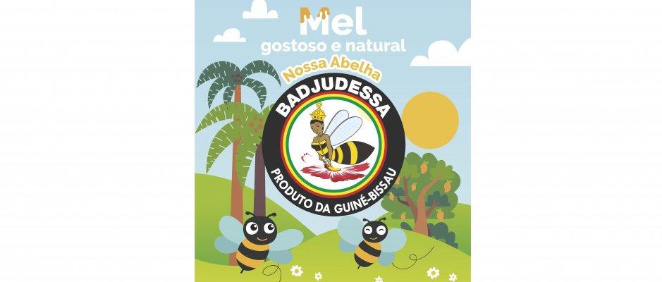 Projeto Promover a Apicultura Inclusiva no Leste da Guiné-Bissau