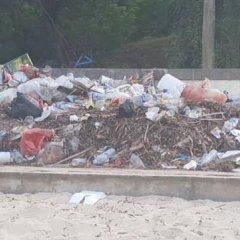 Escolas de Bissau vão aprender educação ambiental