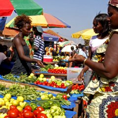 Novas regras de fiscalização alimentar na Guiné-Bissau