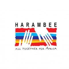 Prémio Internacional Harambee Comunicar África