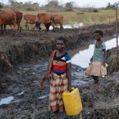 Construção de estradas nas zonas rurais em Moçambique