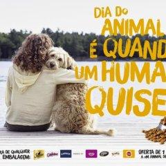 Cascais celebra Dia Mundial do Animal com inúmeras iniciativas